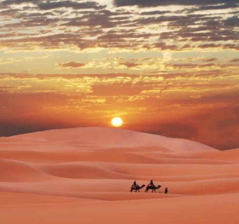 choisir son chemin entre les dunes