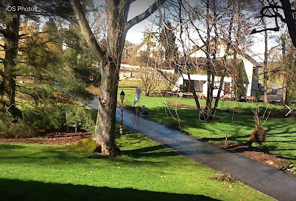 Photo du jardin henri Hoff