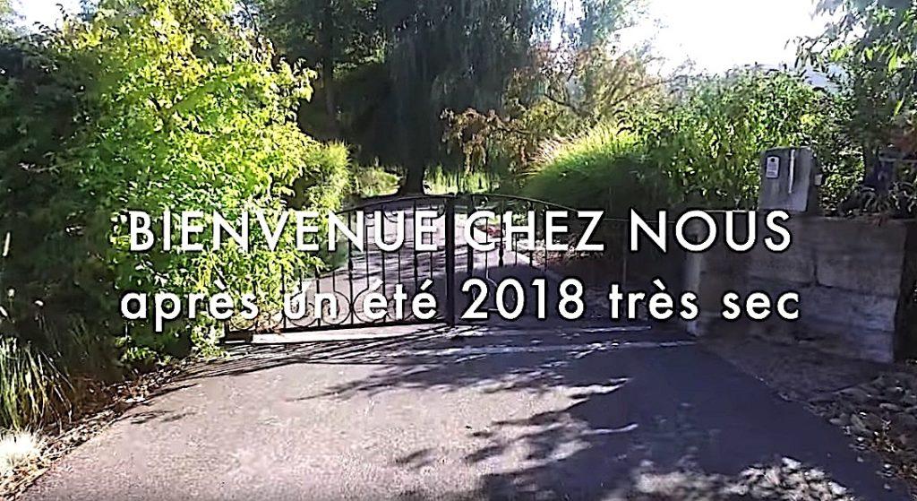 Notre jardin au début de l'automne 2018