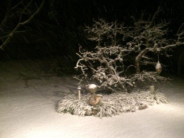 Bourrasque de neige